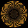 Sacred_geometry_illusion.jpg 93.52 KB